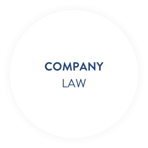 duvinage_company-law